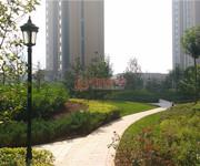 鼎秀華城內部景觀道路