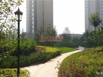 鼎秀华城实景图