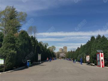 澤州公園實景圖5