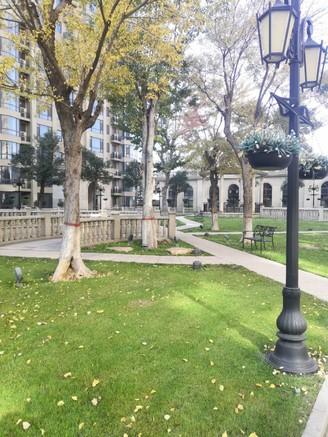 荣誉堡三室两厅两卫277平米住宅出售