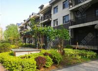 紫薇华庭,中式徽派庭院,低层低密度,繁忙生活中的一处雅居
