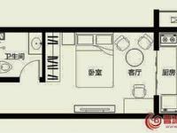 铭基凤凰城一室一厨一卫37平米住宅出售