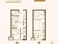 鑫港城 5.6米层高 买一层送一层 可贷款单价6700
